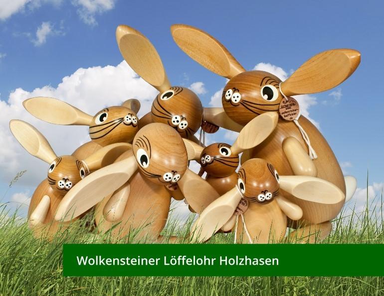 media/image/wolkensteiner-loeffelohr.jpg